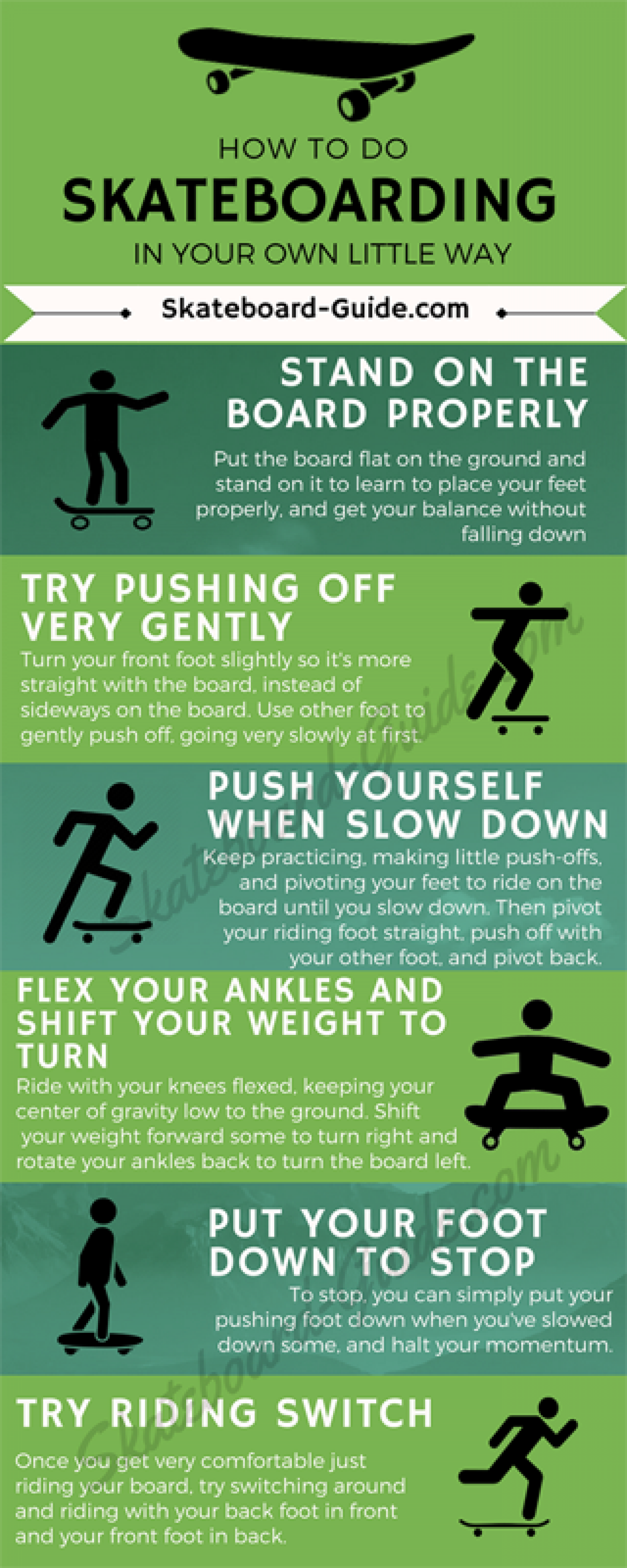 Skateboard Infographic Infographic