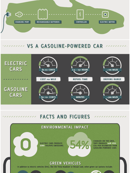 Smackdown Electric Vehicles vs Regular Vehicles Infographic