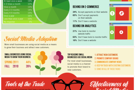 Small Business Using the Online Approach Infographic