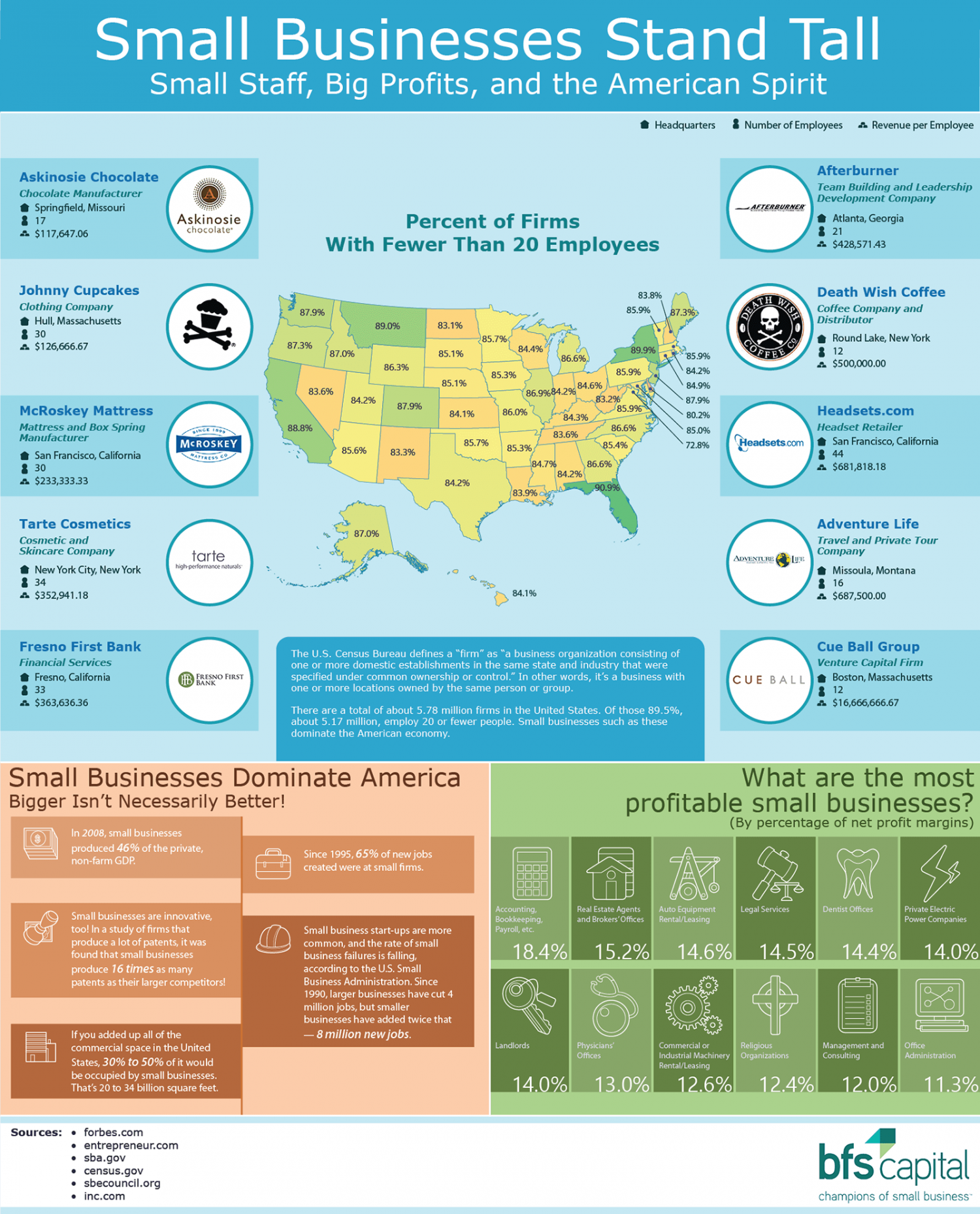 Small Businesses Stand Tall: Small Staff, Big Profits, and the American Spirit Infographic