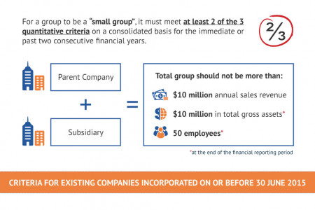 """Small Company"" Concept for Exemption from Statutory Audit Infographic"