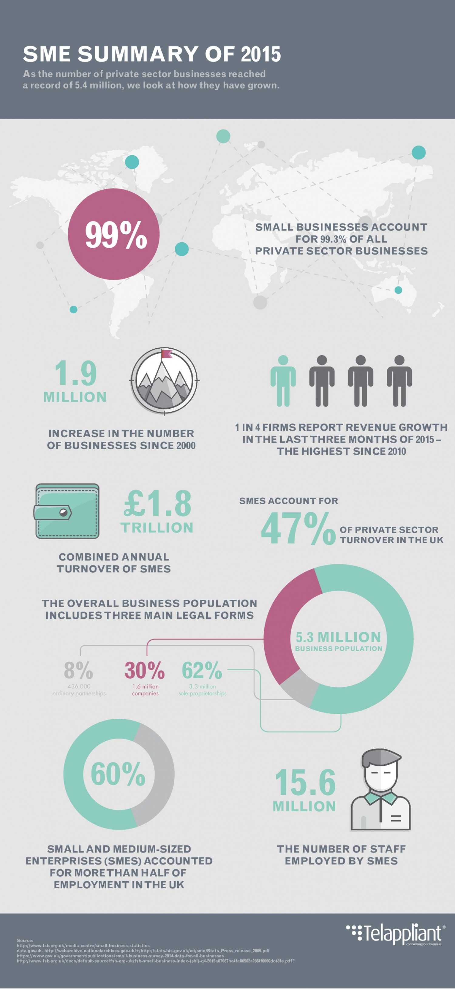 SME Summary of 2015 Infographic