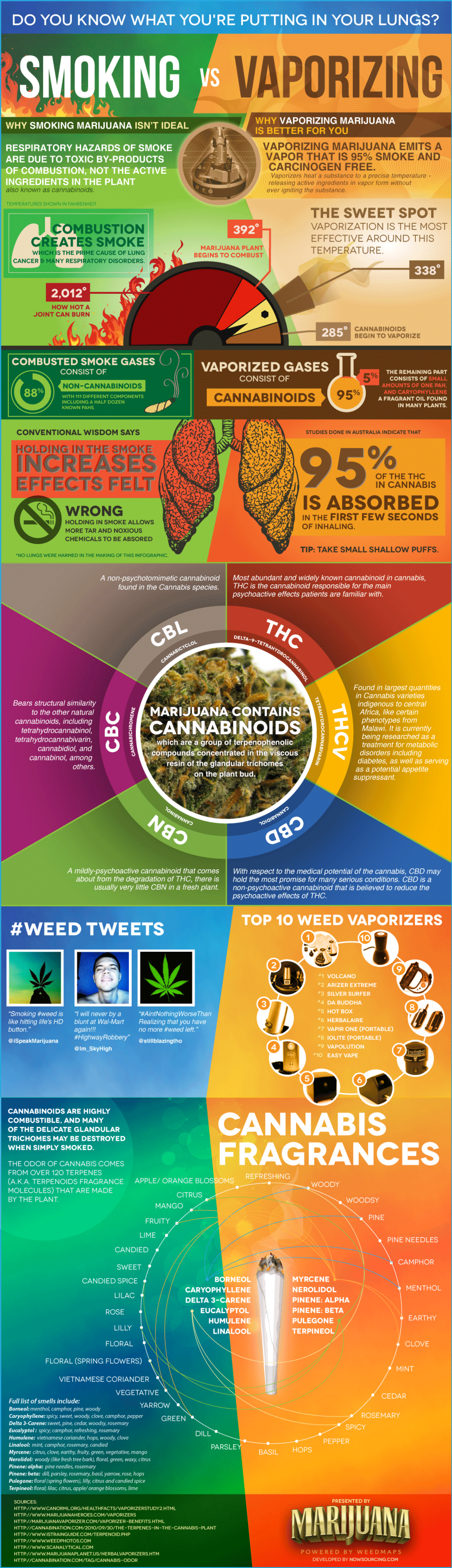 Smoking Vs. Vaporizing...What's the Difference? Infographic