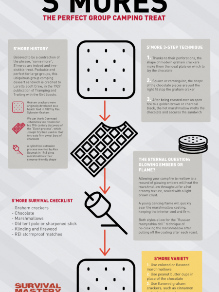Smores Treats Infographic Infographic