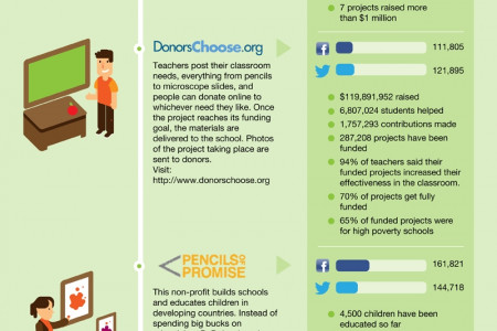 Social Change Through Facebook, Other Social Networks Infographic