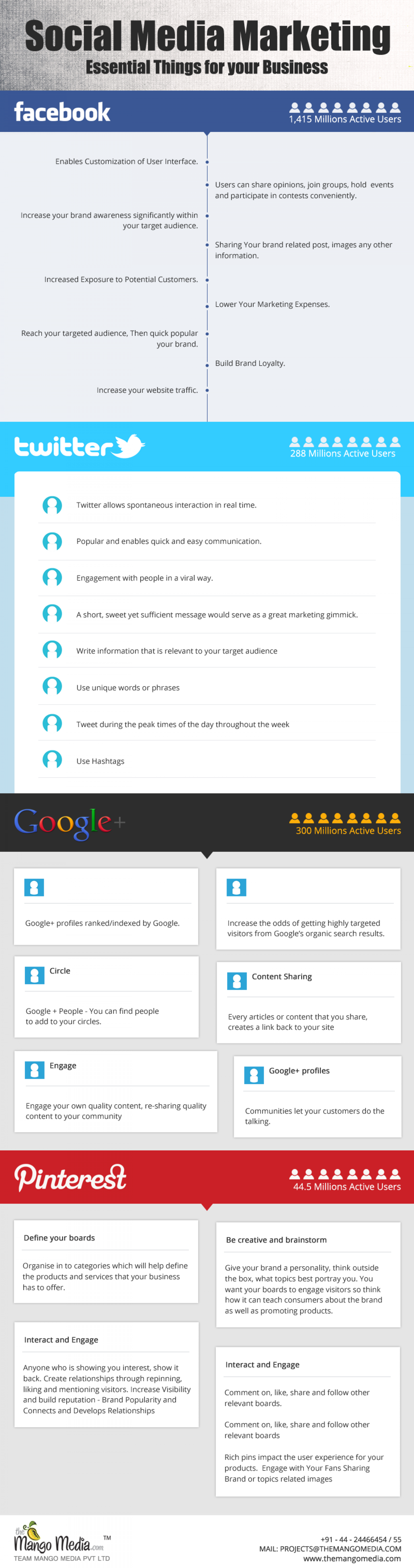 Social Medai Marketing: Essential Things for Business Infographic
