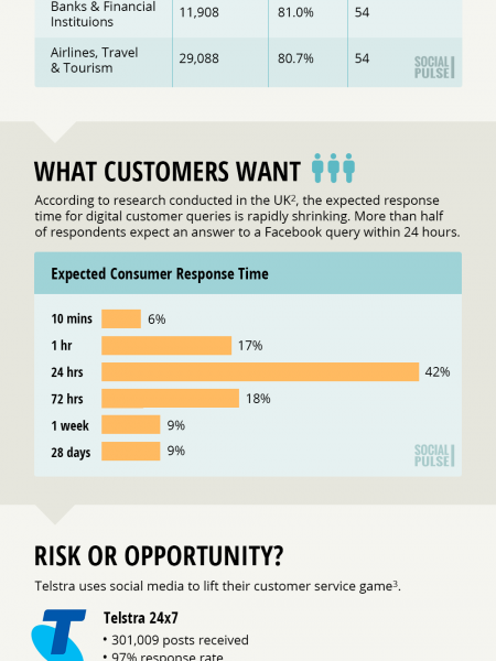 Social Media Customer Care Report - Social Pulse™  Infographic
