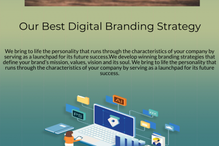 Social Media Marketing Company in Delhi | Elysian Digital Services Infographic
