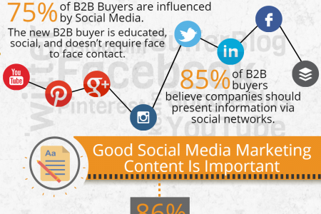 Social Media's Role in The Marketing Strategy Infographic