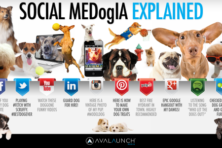 Social MeDogIA Explained  Infographic