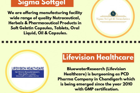Soft Gelatin Capsules Manufacturers in India | Ernst Pharmacia Infographic
