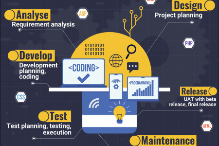 Software Development  Process Infographic