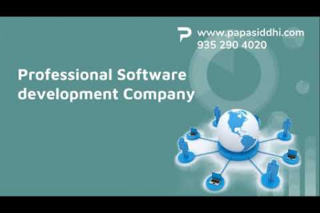 Software Development company Udaipur Papasiddhi Infographic