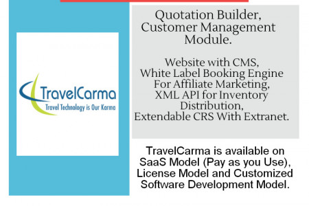Software Solutions for Travel Companies Infographic