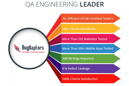 Software Testing Services - Hire Professional Test Engineers Infographic