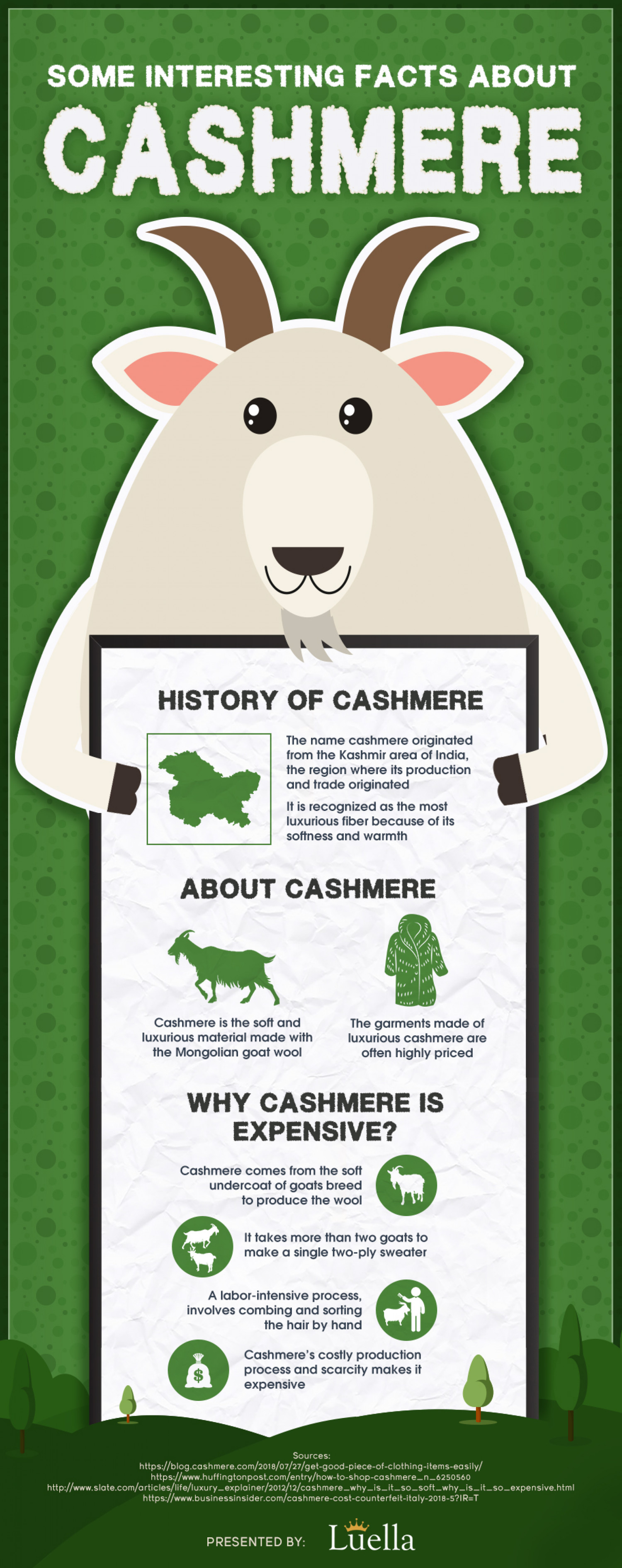 Some Interesting Facts About Cashmere Infographic