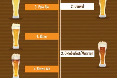 Some Popular Beer Types Infographic