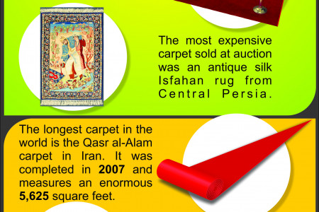 Some Special Facts About Carpet Infographic