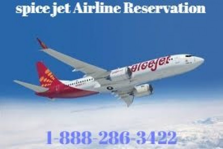 Spicejet Airline Infographic