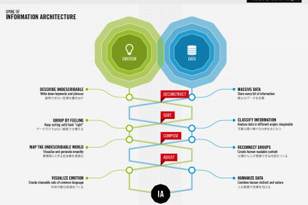 Spine of Information Architecture Infographic