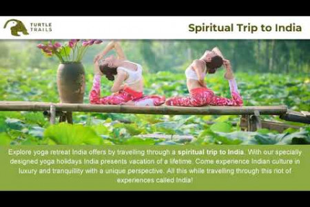 Spiritual Trip to India | Turtle Trails Infographic