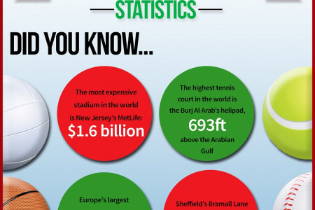 Sports Surfaces and Stadiums Infographic