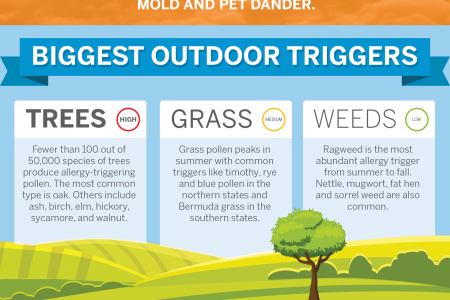 Spring Allergies - What You Need To Know Infographic