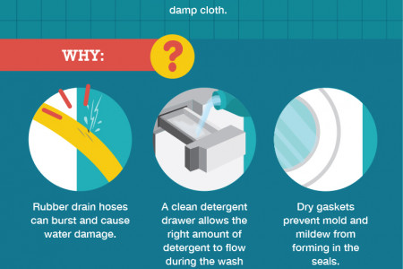 Squeaky Clean: A Guide to Cleaning Your Appliances Infographic