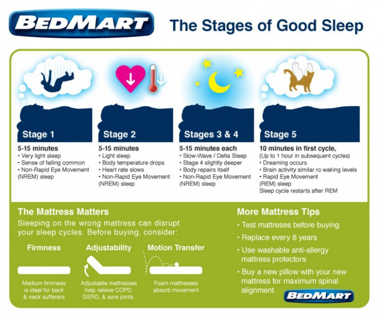 Stages of Good Sleep Infographic
