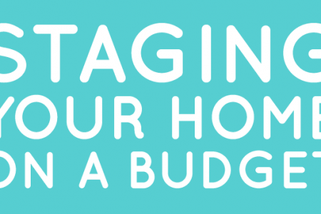 Staging Your Home On a Budget For a Fast Sale Infographic