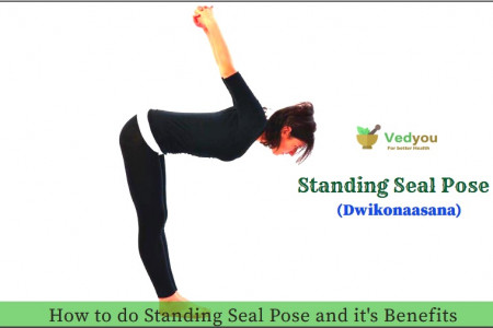 Standing Seal Pose | Dwikonasana | How to do standing Seal Pose and it's Benefits Infographic
