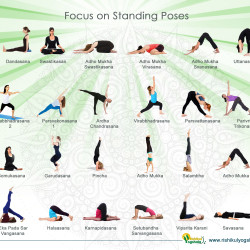 standing yoga poses for beginners  visually