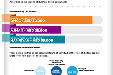 Starting Your Free Zone Business in Dubai Infographic