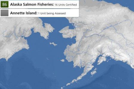 State Of The Salmon Infographic