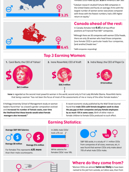Statistics and Insights On Women CEO's Infographic