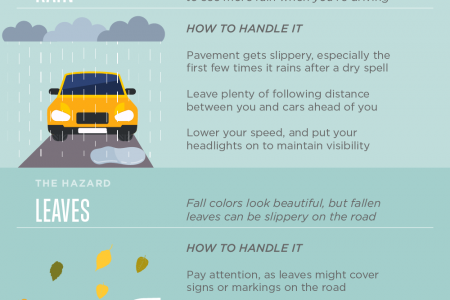 Stay Safe on the Road This Fall Infographic