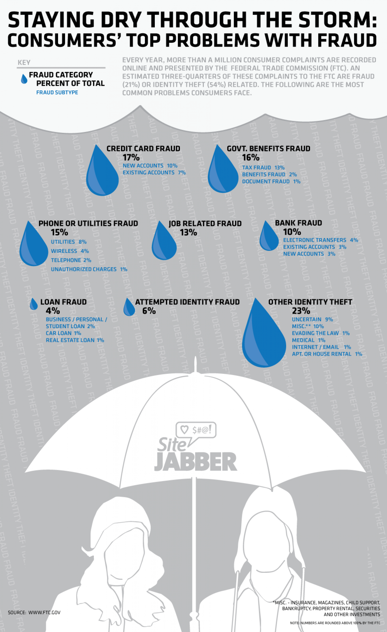 Staying dry through the storm: Consumers' top problems with fraud Infographic