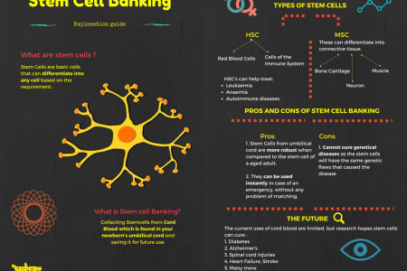 Stem Cell banking Guide  Infographic