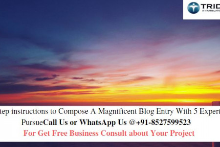 Step by step instructions to Compose A Magnificent Blog Entry With 5 Expert Tips To Pursue Infographic
