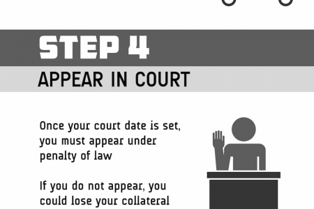Step by Step: The Bail Process Infographic
