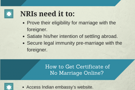 Steps to Get Certificate of No Marriage Online  Infographic
