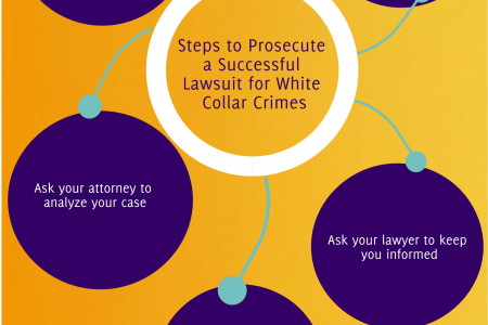 Steps to prosecute a successful lawsuit for white collar crimes Infographic