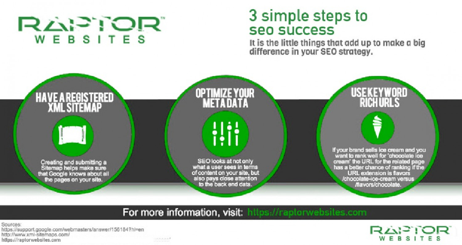 Steps to SEO Success Infographic