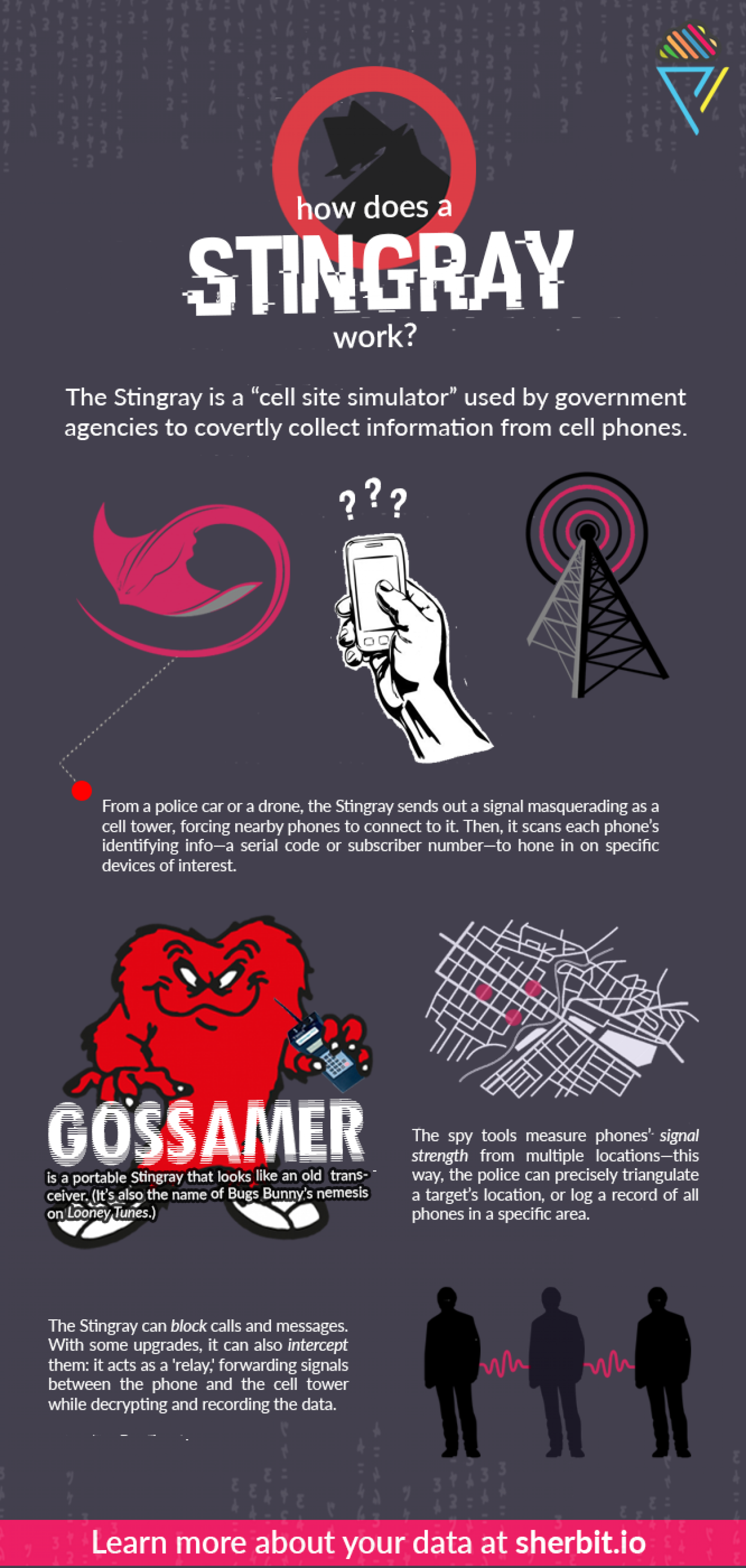 "Stingray: ""The Biggest Threat to Cell Phone Privacy"" Infographic"