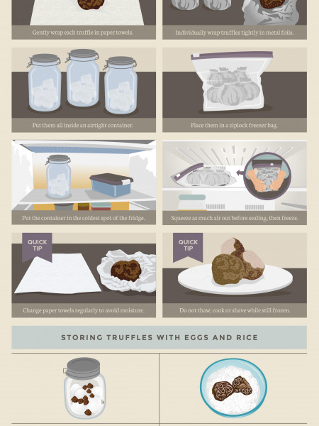 Storing Fresh Truffles Infographic