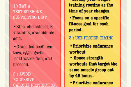 Strength: An Essential Element Of An Endurance Training Program  Infographic
