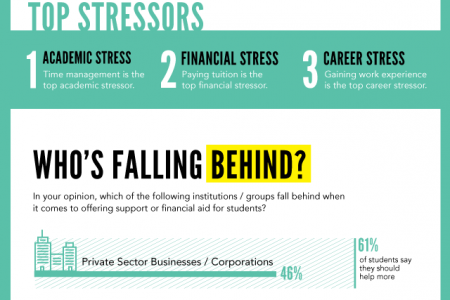 Student Stressors Infographic