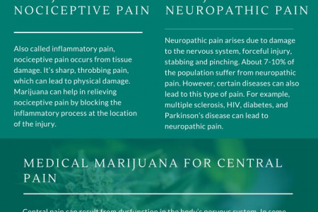 SUFFERING FROM CHRONIC PAIN? MEDICAL MARIJUANA CAN HELP Infographic