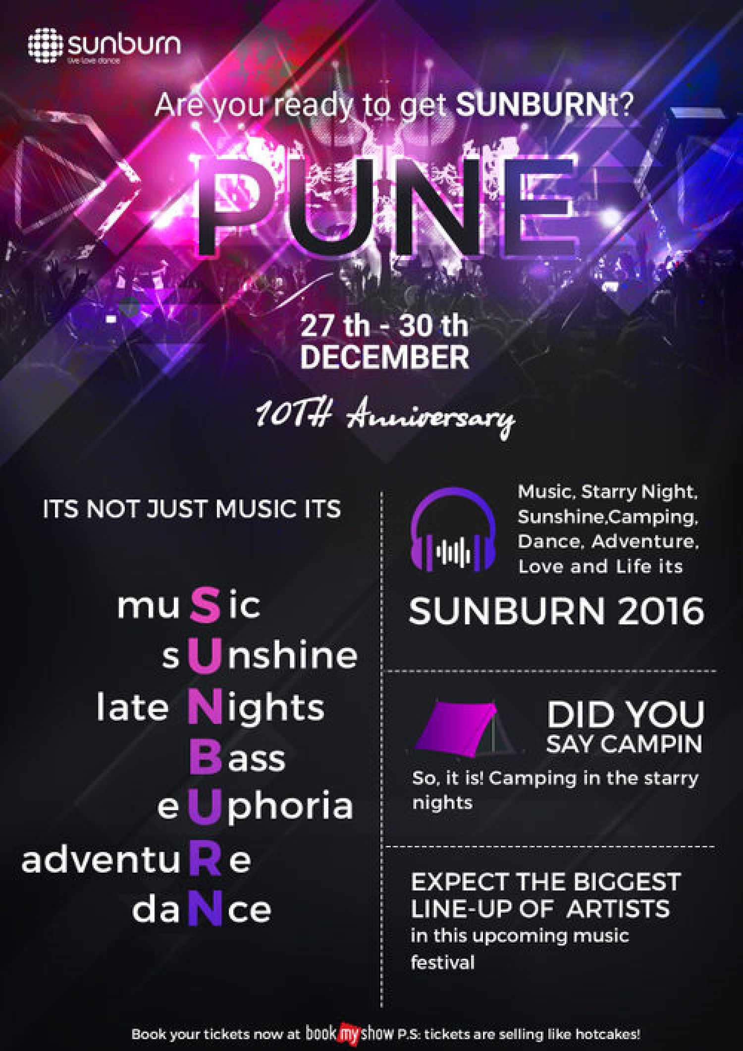 Sunburn 10 - Asia's Largest New Year Music Festival Infographic