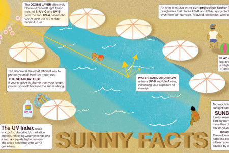 Sunny facts Infographic